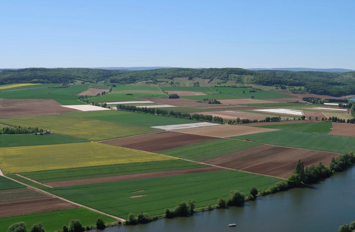 L'usage de pesticides en agriculture conventionnelle