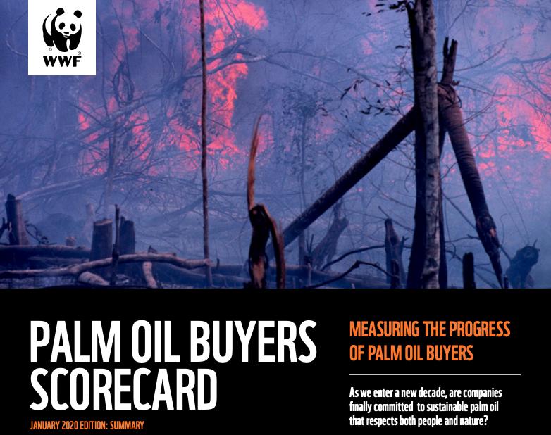 Rapport 2020 du WWF sur l'huile de palme durable